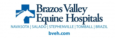 Brazos Valley Equine Hospital